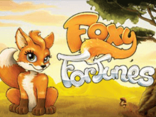 Foxy Fortunes